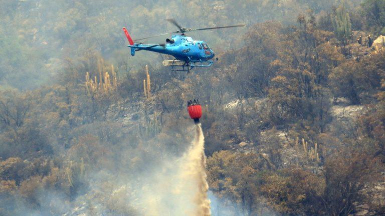 Empresa de helicópteros se suma para combatir incendios forestales en Chile